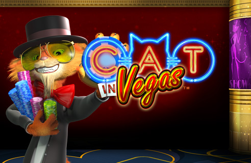 Play Cat in Vegas at Casino.com UK